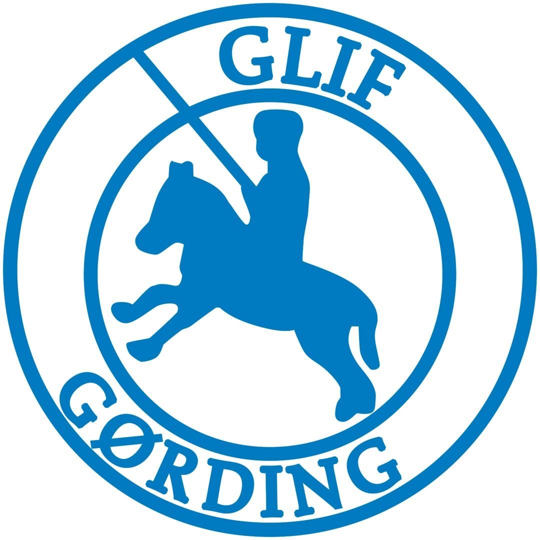 Reference - GLIF - Gørding Lourup Idrætsforening