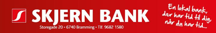 Reference - Skjern Bank
